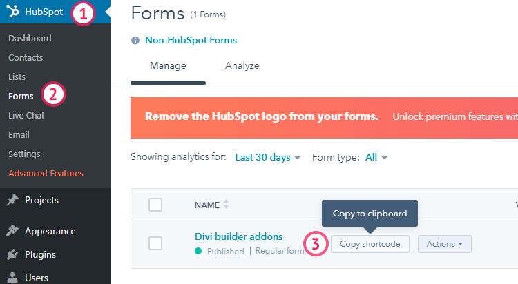 HubSpot subscription forms with Divi